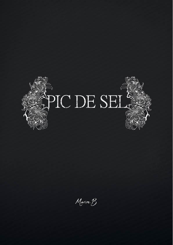 Pic-de-sel3