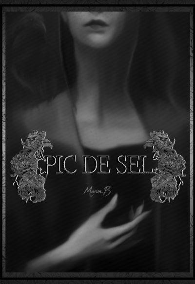 couverture Pic de sel1
